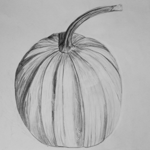 Graphite Pumkin Drawing